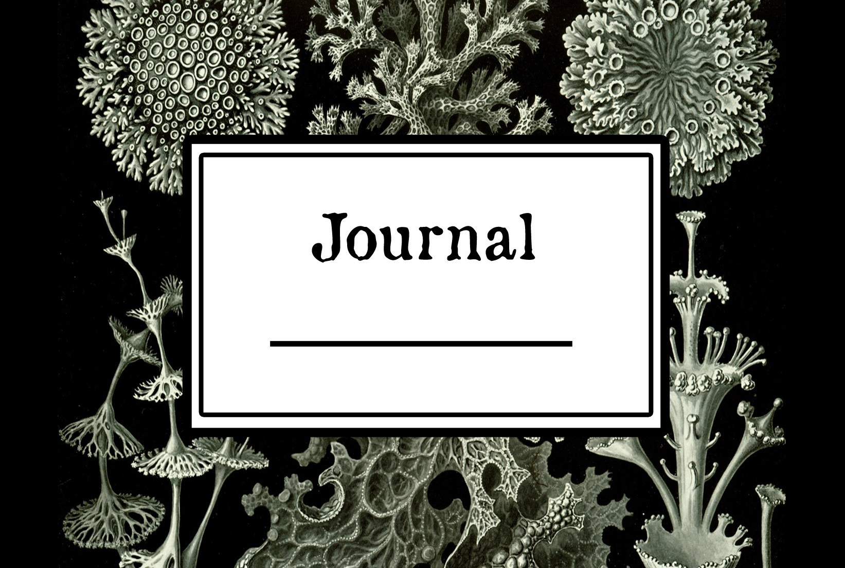 Crazy Useful Journal 2, cover by Ernst Haeckel